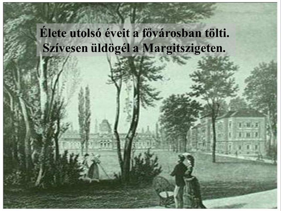 Élete utolsó éveit a fővárosban tölti. Szívesen üldögél a Margitszigeten.