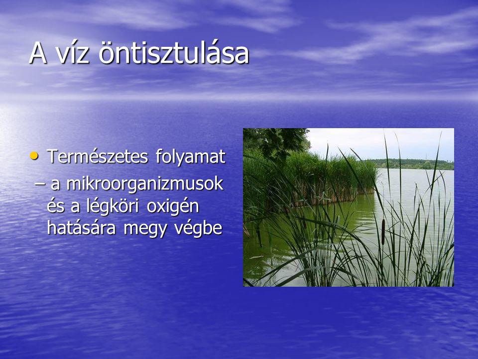 A víz öntisztulása Természetes folyamat Természetes folyamat – a mikroorganizmusok és a légköri oxigén hatására megy végbe – a mikroorganizmusok és a