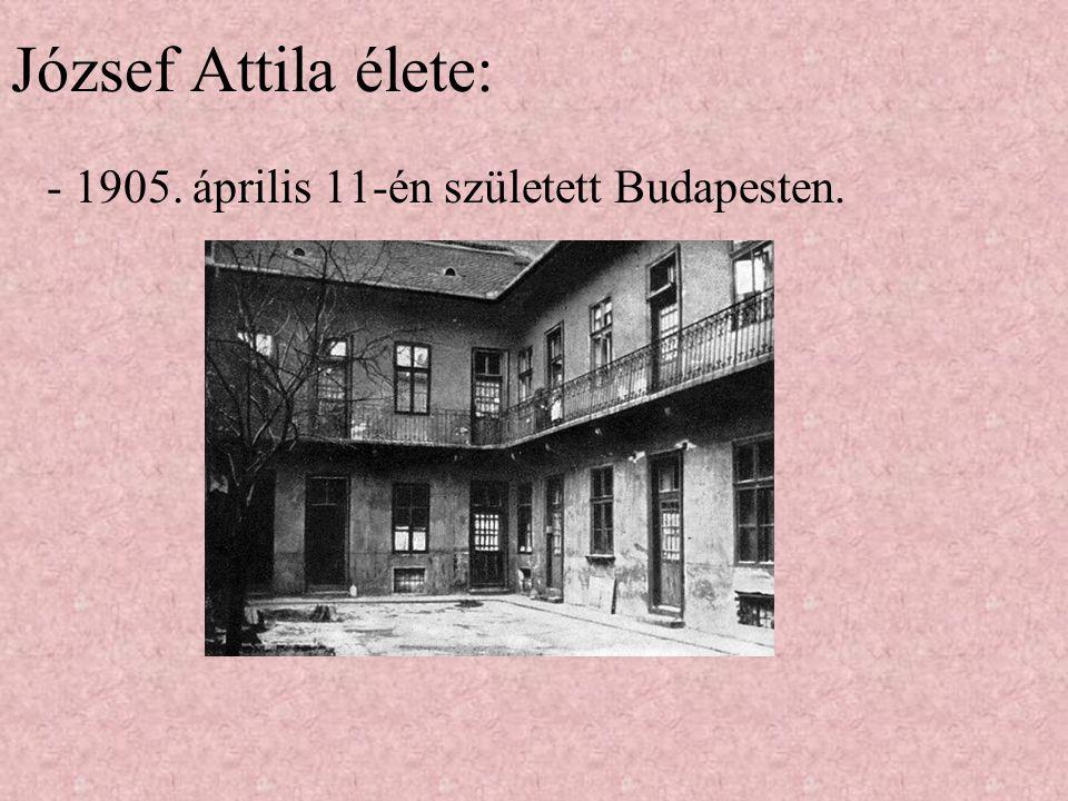 """""""Nem én kiáltok a föld dübörög József Attila"""
