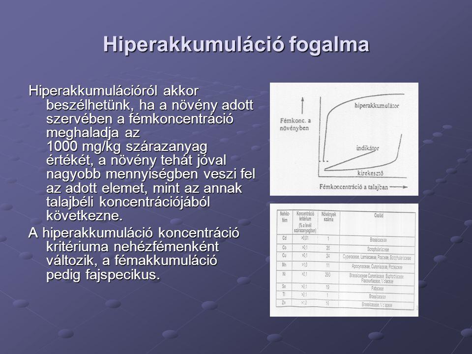 Hiperakkumuláció fogalma Hiperakkumulációról akkor beszélhetünk, ha a növény adott szervében a fémkoncentráció meghaladja az 1000 mg/kg szárazanyag ér