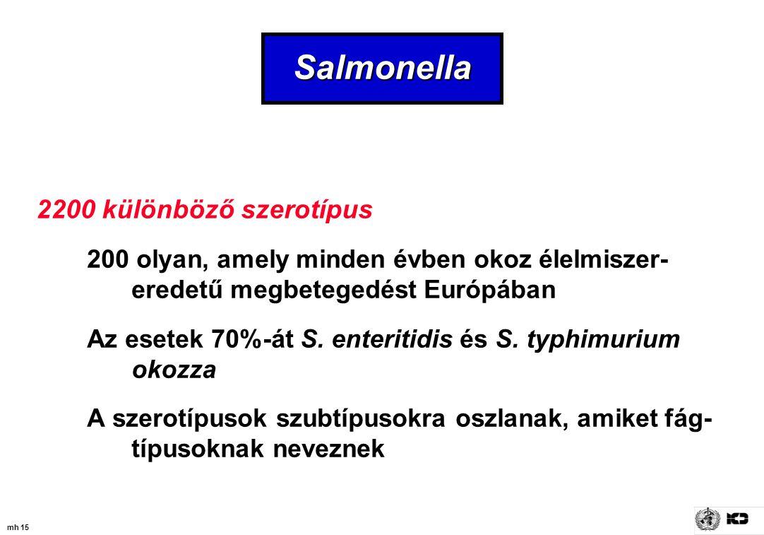 mh 15 Salmonella 2200 különböző szerotípus 200 olyan, amely minden évben okoz élelmiszer- eredetű megbetegedést Európában Az esetek 70%-át S. enteriti