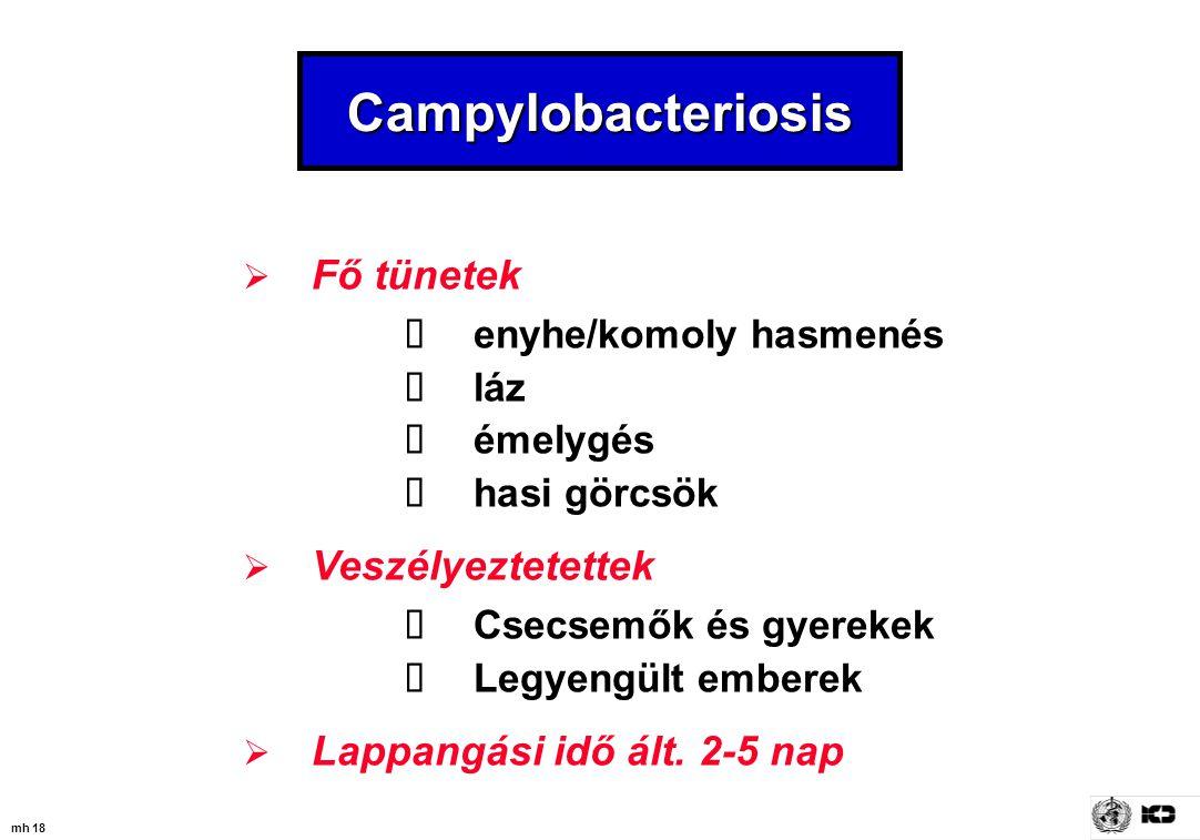 mh 18 Campylobacteriosis  Fő tünetek  enyhe/komoly hasmenés  láz  émelygés  hasi görcsök  Veszélyeztetettek  Csecsemők és gyerekek  Legyengült