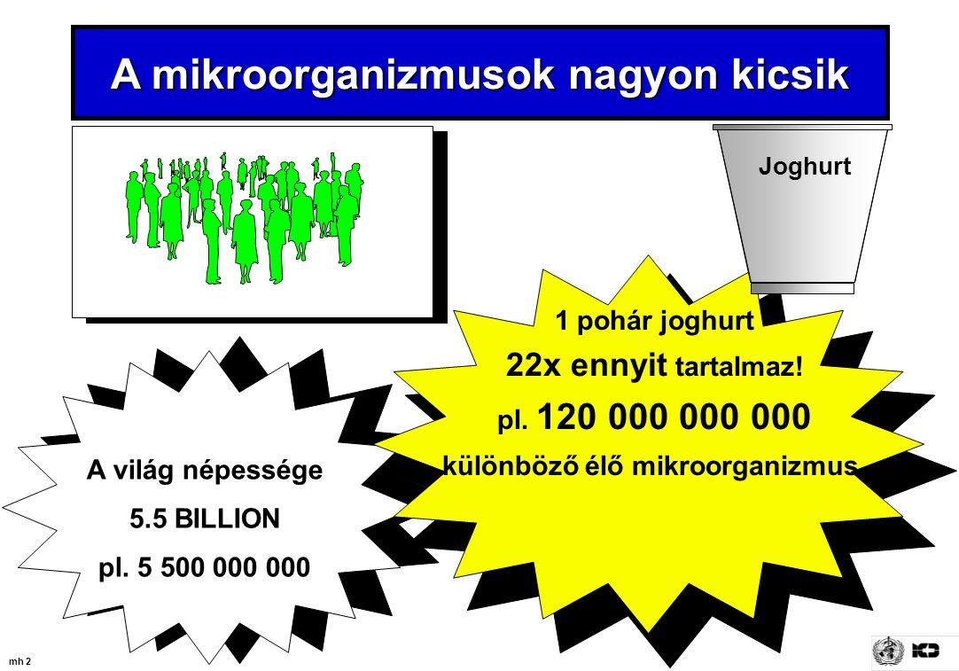 mh 2 A világ népessége 5.5 BILLION pl. 5 500 000 000 1 pohár joghurt 22x ennyit tartalmaz! pl. 120 000 000 000 különböző élő mikroorganizmus. A mikroo