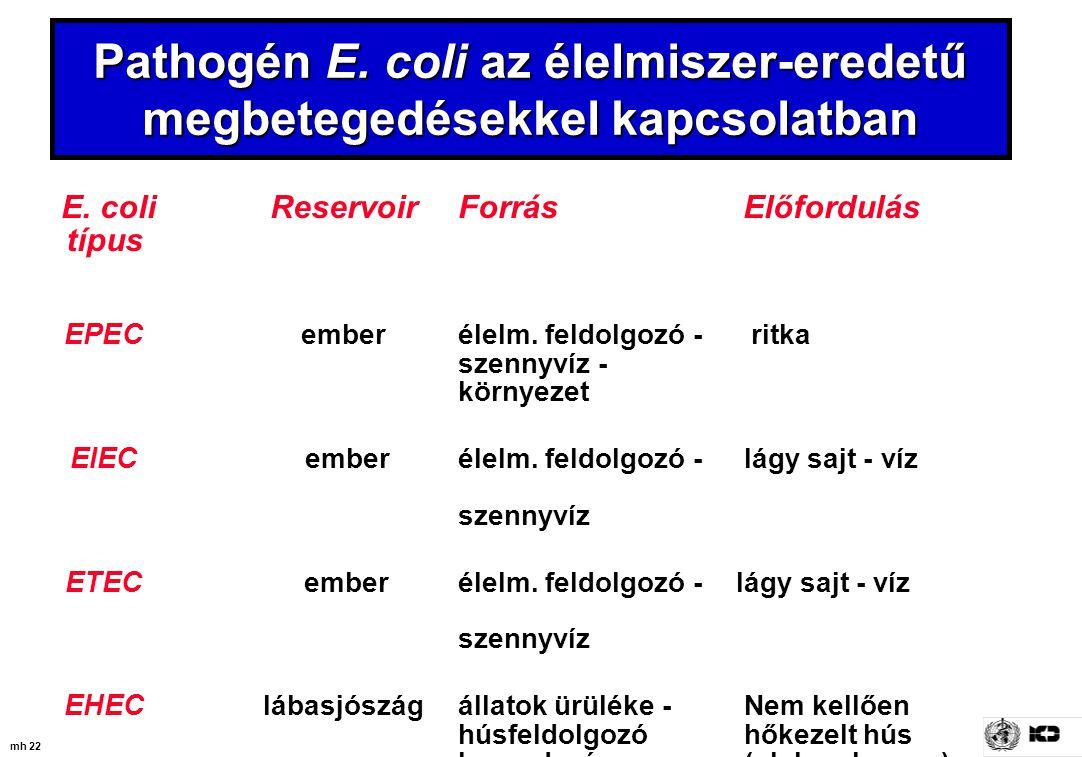 mh 22 Pathogén E. coli az élelmiszer-eredetű megbetegedésekkel kapcsolatban E. coli ReservoirForrás Előfordulás típus EPEC emberélelm. feldolgozó - ri