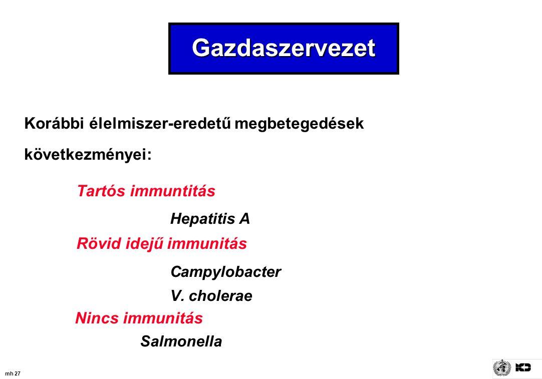 mh 27 Gazdaszervezet Korábbi élelmiszer-eredetű megbetegedések következményei: Tartós immuntitás Hepatitis A Rövid idejű immunitás Campylobacter V. ch