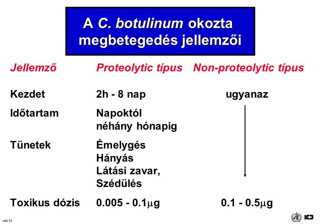 mh 31 JellemzőProteolytic típus Non-proteolytic típus Kezdet 2h - 8 nap ugyanaz IdőtartamNapoktól néhány hónapig TünetekÉmelygés Hányás Látási zavar,