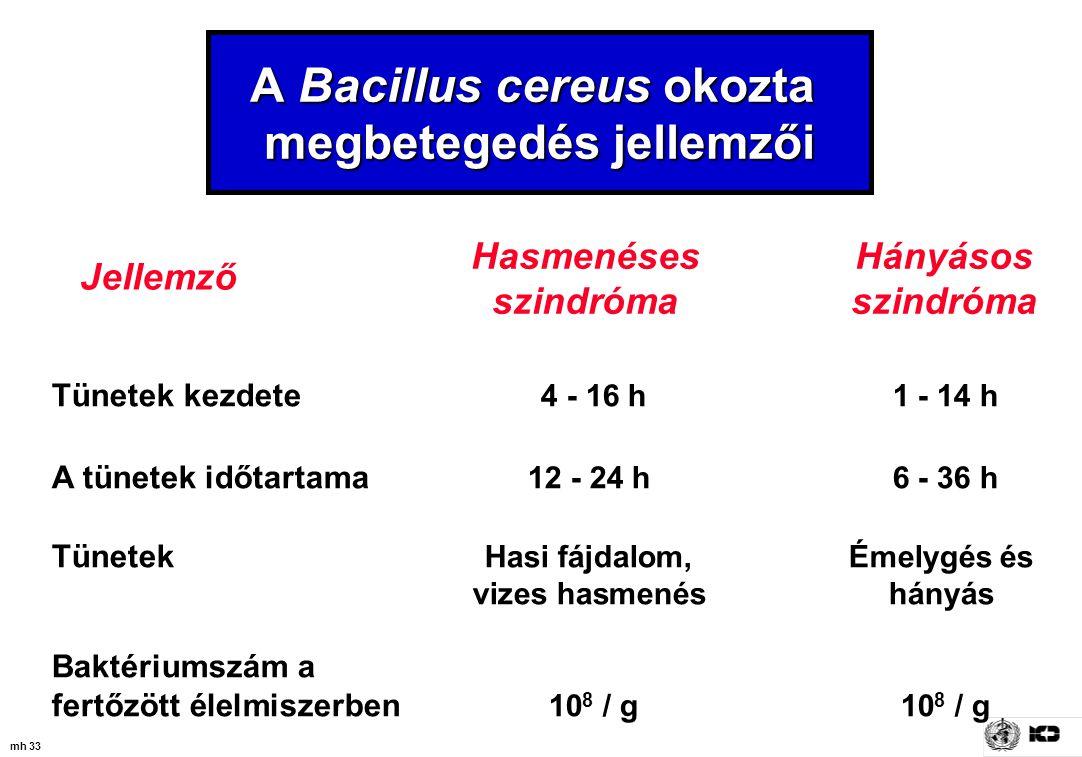 mh 33 Tünetek kezdete 4 - 16 h1 - 14 h A tünetek időtartama 12 - 24 h 6 - 36 h Tünetek Hasi fájdalom, Émelygés és vizes hasmenés hányás Baktériumszám