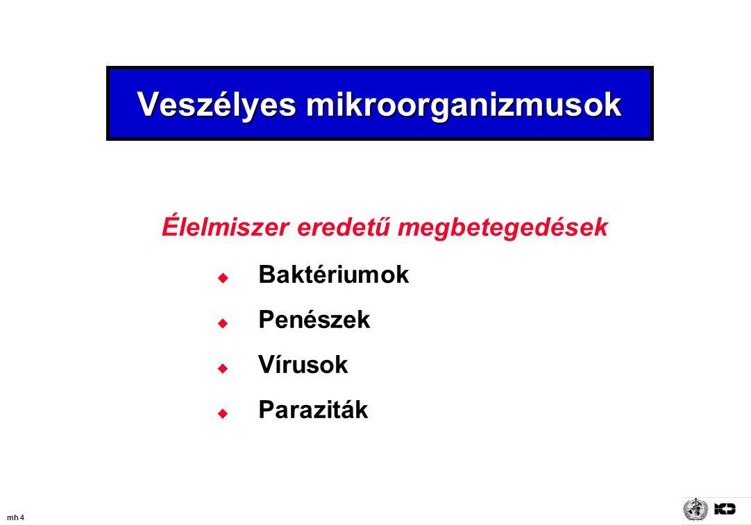 mh 25 Organizmus Virulencia Vegetatív sejtek vagy spóra Fertőzési mennyiség