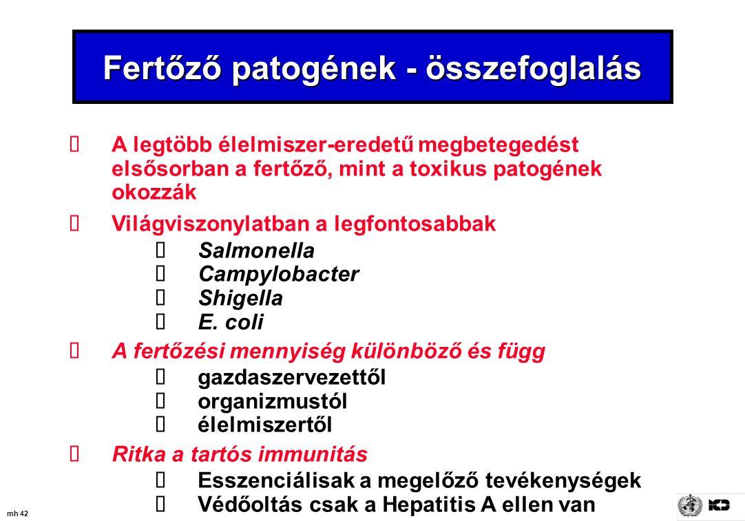 mh 42 Fertőző patogének - összefoglalás  A legtöbb élelmiszer-eredetű megbetegedést elsősorban a fertőző, mint a toxikus patogének okozzák  Világvis