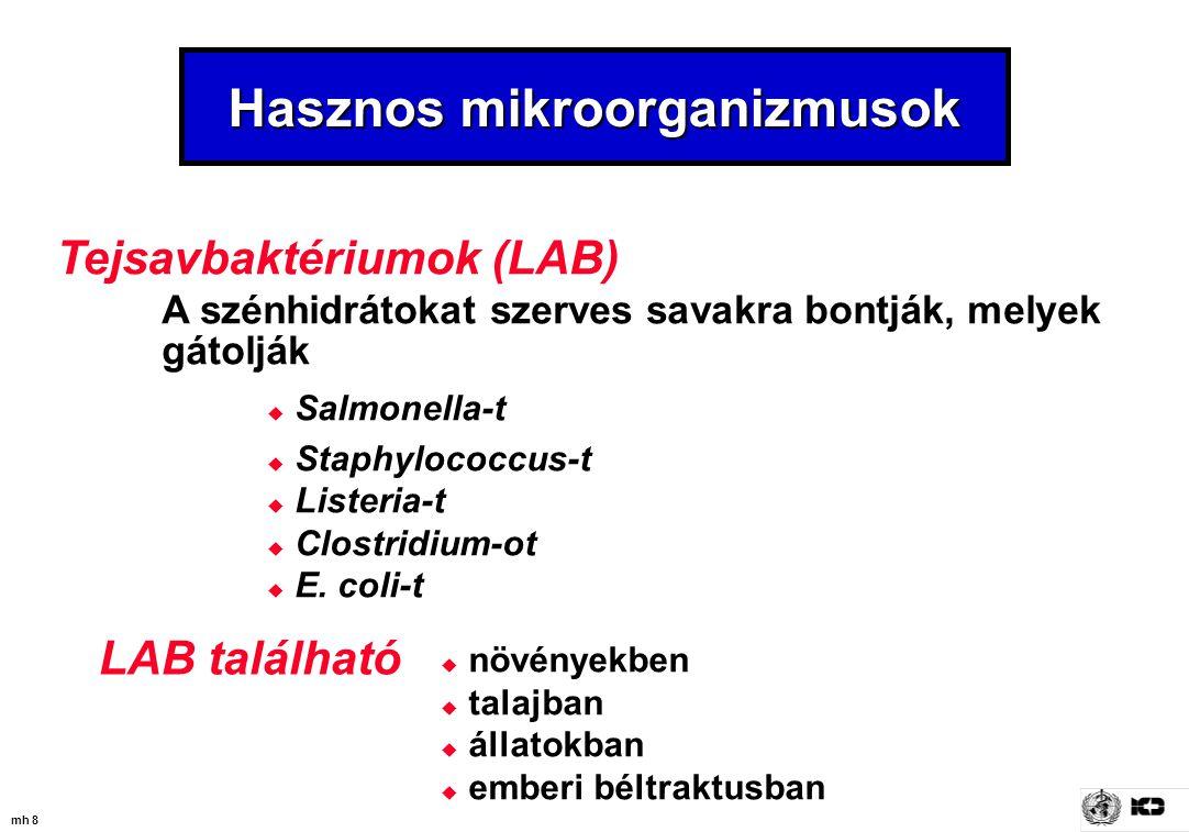 mh 8 Hasznos mikroorganizmusok Tejsavbaktériumok (LAB) A szénhidrátokat szerves savakra bontják, melyek gátolják  Salmonella-t  Staphylococcus-t  L