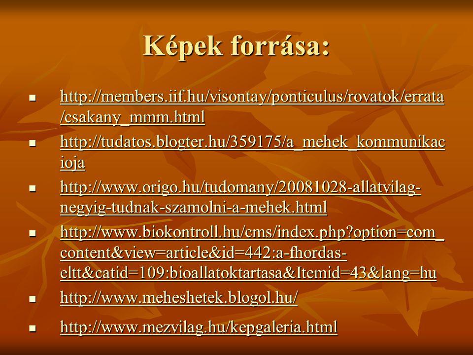 Képek forrása: http://members.iif.hu/visontay/ponticulus/rovatok/errata /csakany_mmm.html http://members.iif.hu/visontay/ponticulus/rovatok/errata /cs