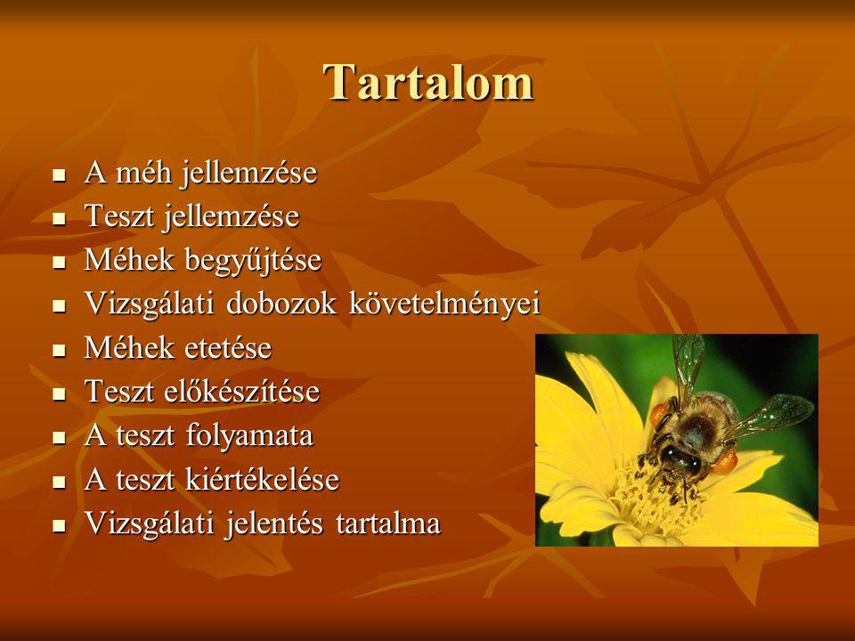 Tartalom A méh jellemzése A méh jellemzése Teszt jellemzése Teszt jellemzése Méhek begyűjtése Méhek begyűjtése Vizsgálati dobozok követelményei Vizsgá