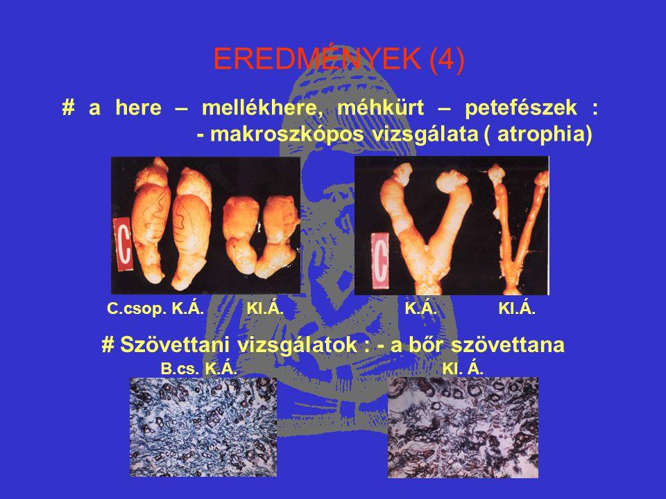 EREDMÉNYEK (4) C.csop. K.Á. KI.Á. K.Á. KI.Á. # a here – mellékhere, méhkürt – petefészek : - makroszkópos vizsgálata ( atrophia) # Szövettani vizsgála