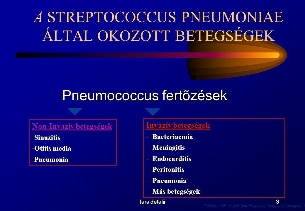 SURSA: CDC, STUDIO BACTRO ROMANIA Conf Dr AZOICAI-IASI, www.who.int4 JRVNYTANI ADATOK 2 JÁRVÁNYTANI ADATOK 2 A Pneumococcis az első oka a közösségben szerzett pneumoniának, ezeknek kb 36%-át okozza.