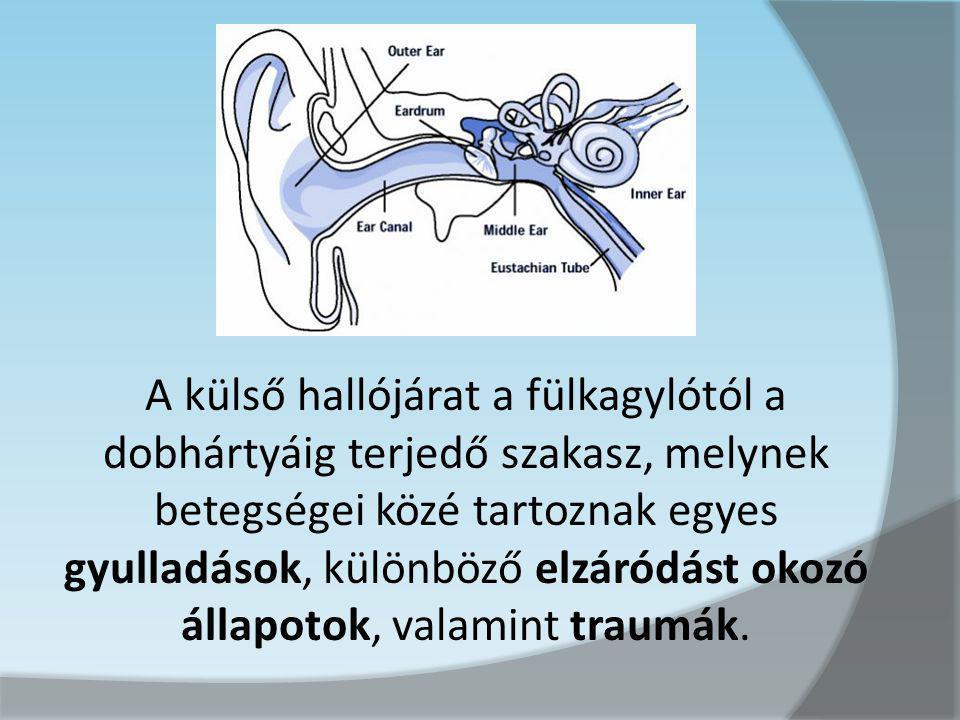 A külső hallójárat a fülkagylótól a dobhártyáig terjedő szakasz, melynek betegségei közé tartoznak egyes gyulladások, különböző elzáródást okozó állapotok, valamint traumák.