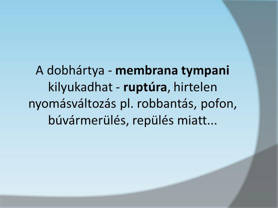 A dobhártya - membrana tympani kilyukadhat - ruptúra, hirtelen nyomásváltozás pl. robbantás, pofon, búvármerülés, repülés miatt...