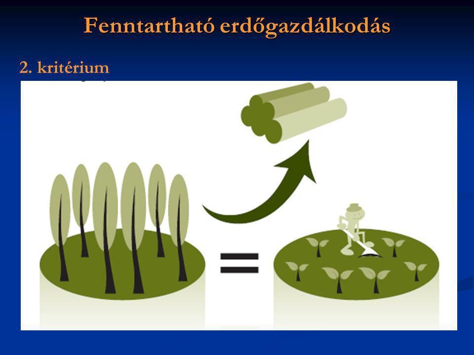 Fenntartható erdőgazdálkodás 2. kritérium
