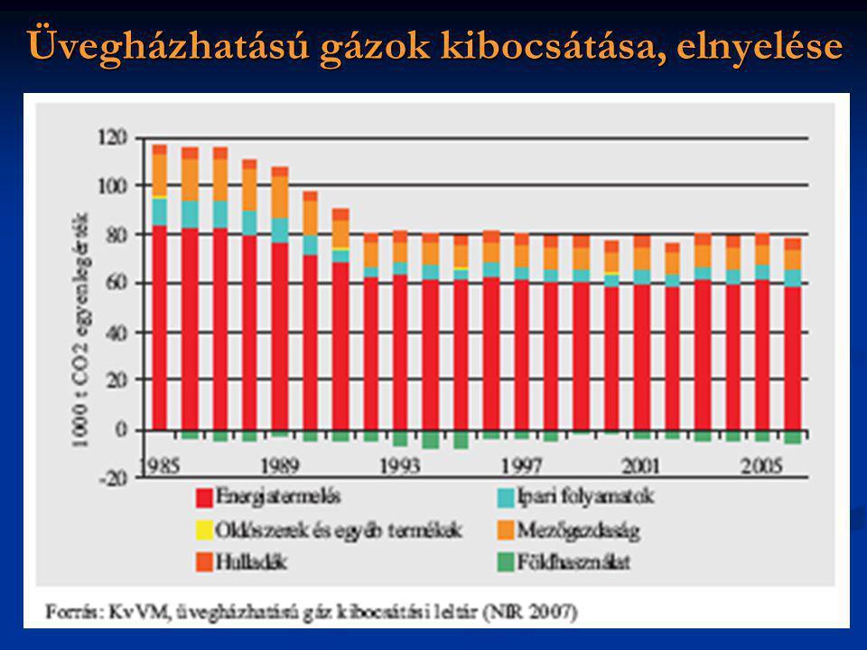 Üvegházhatású gázok kibocsátása, elnyelése