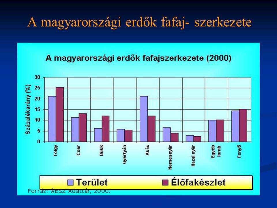 A magyarországi erdők fafaj- szerkezete