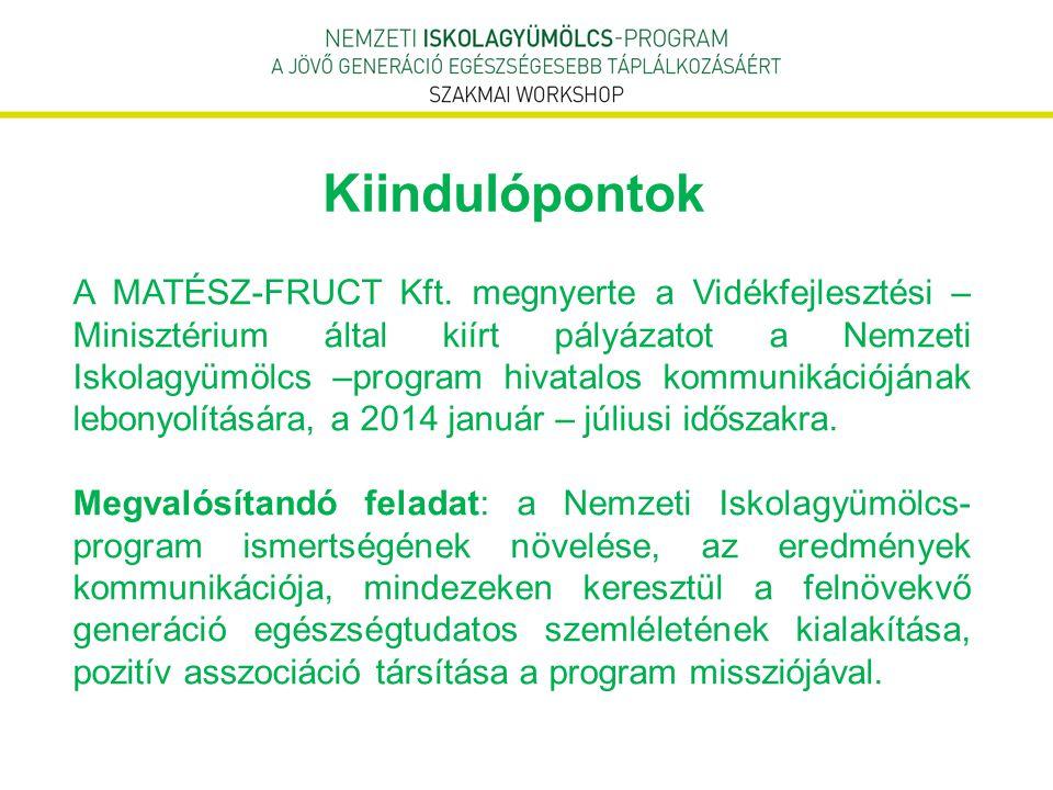 A pályázatot megelőzően végzett proaktív tevékenység  2013.