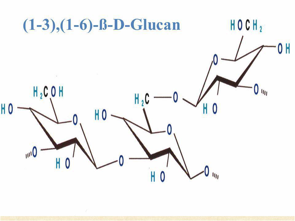 (1-3),(1-6)-ß-D-Glucan