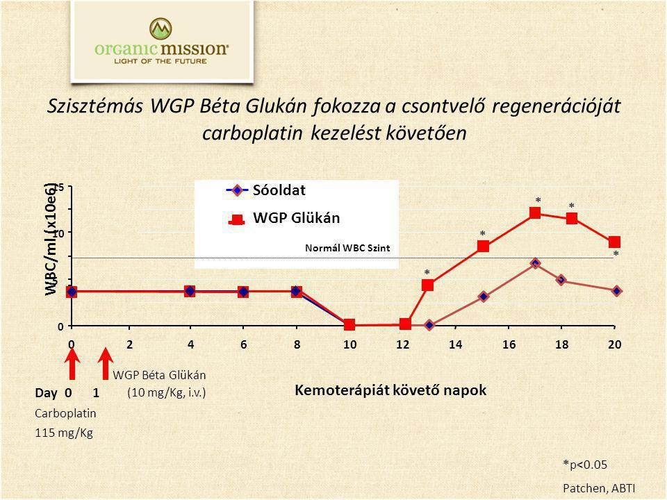 Szisztémás WGP Béta Glukán fokozza a csontvelő regenerációját carboplatin kezelést követően Kemoterápiát követő napok 0 5 10 15 0468101214161820 WBC/ml (x10e6) Sóoldat WGP Glükán Normál WBC Szint Day 0 1 Carboplatin 115 mg/Kg WGP Béta Glükán (10 mg/Kg, i.v.) *p<0.05 Patchen, ABTI * * * * * 2