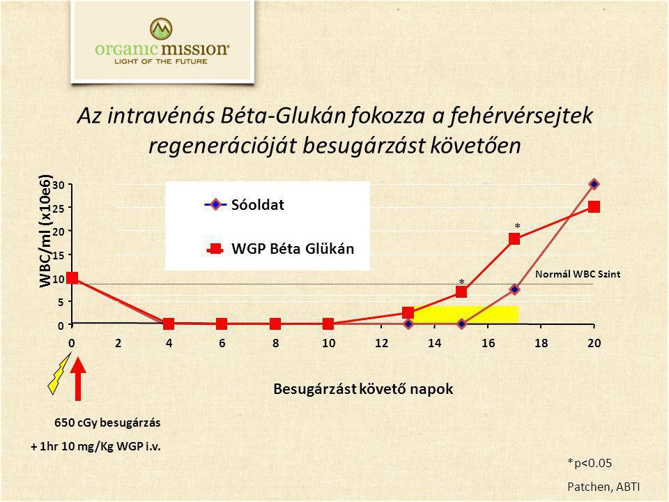Az intravénás Béta-Glukán fokozza a fehérvérsejtek regenerációját besugárzást követően Besugárzást követő napok 0 5 10 15 20 25 30 0468101214161820 WBC/ml (x10e6) Sóoldat WGP Béta Glükán Normál WBC Szint *p<0.05 Patchen, ABTI 2 650 cGy besugárzás + 1hr 10 mg/Kg WGP i.v.
