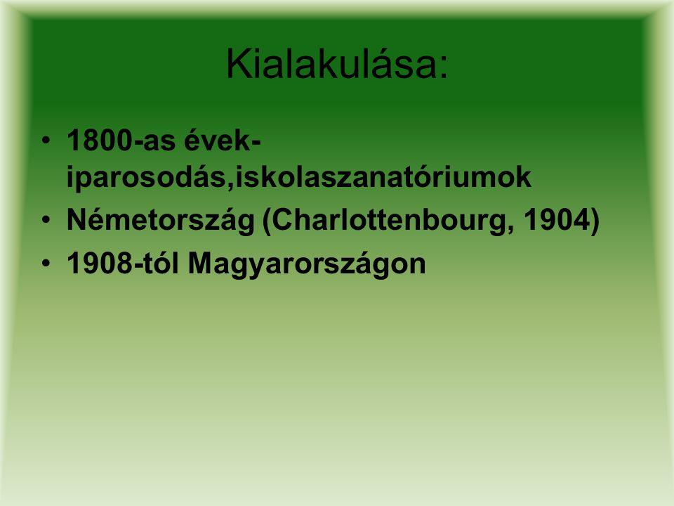 Kialakulása: 1800-as évek- iparosodás,iskolaszanatóriumok Németország (Charlottenbourg, 1904) 1908-tól Magyarországon