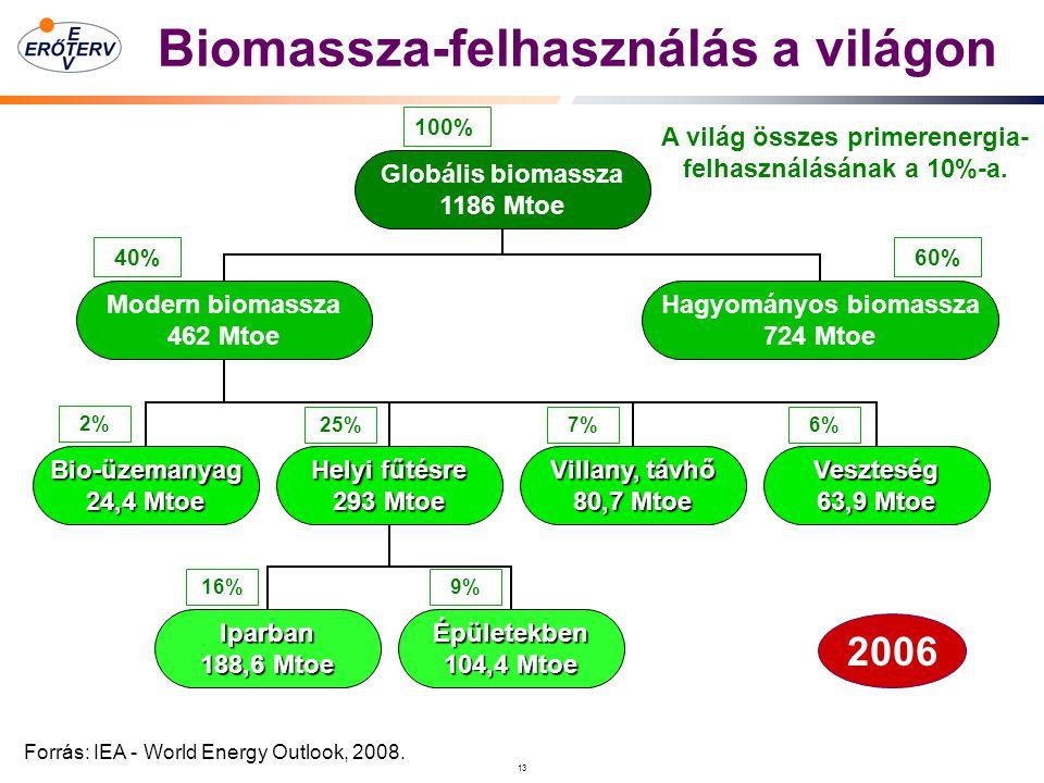 13 Biomassza-felhasználás a világon Forrás: IEA - World Energy Outlook, 2008.