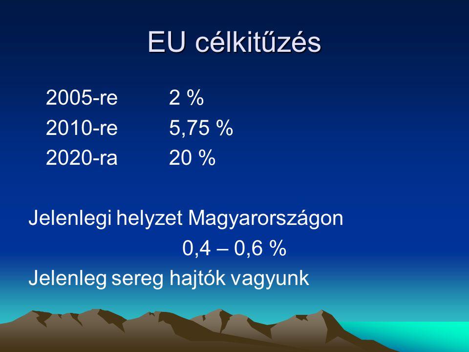 EU célkitűzés 2005-re2 % 2010-re5,75 % 2020-ra20 % Jelenlegi helyzet Magyarországon 0,4 – 0,6 % Jelenleg sereg hajtók vagyunk