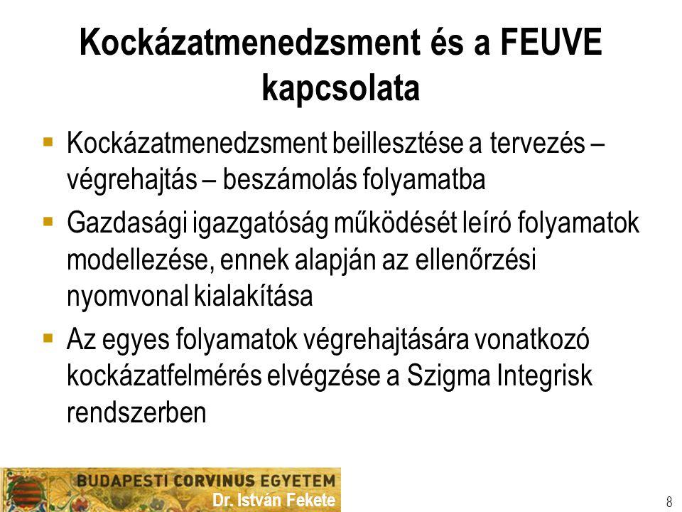 Dr. István Fekete 8 Kockázatmenedzsment és a FEUVE kapcsolata  Kockázatmenedzsment beillesztése a tervezés – végrehajtás – beszámolás folyamatba  Ga