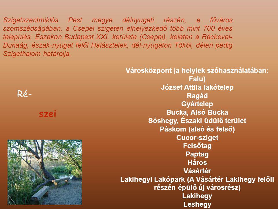 Szigetszentmiklós Pest megye délnyugati részén, a főváros szomszédságában, a Csepel szigeten elhelyezkedő több mint 700 éves település.