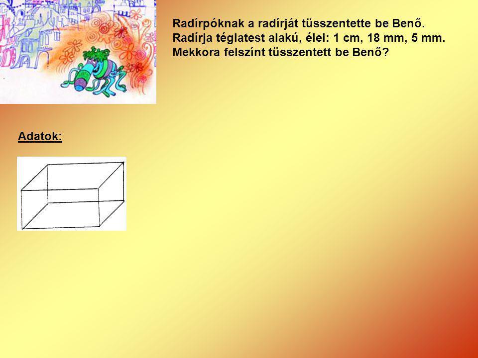 Radírpóknak a radírját tüsszentette be Benő. Radírja téglatest alakú, élei: 1 cm, 18 mm, 5 mm. Mekkora felszínt tüsszentett be Benő?