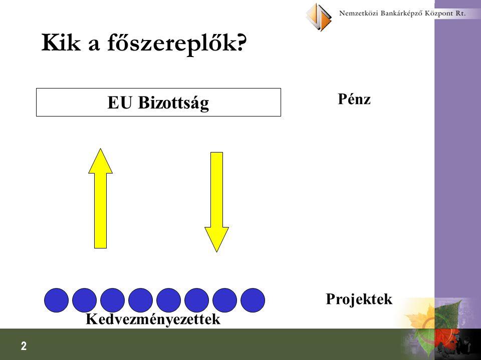 2 Kik a főszereplők? EU Bizottság Pénz Projektek Kedvezményezettek