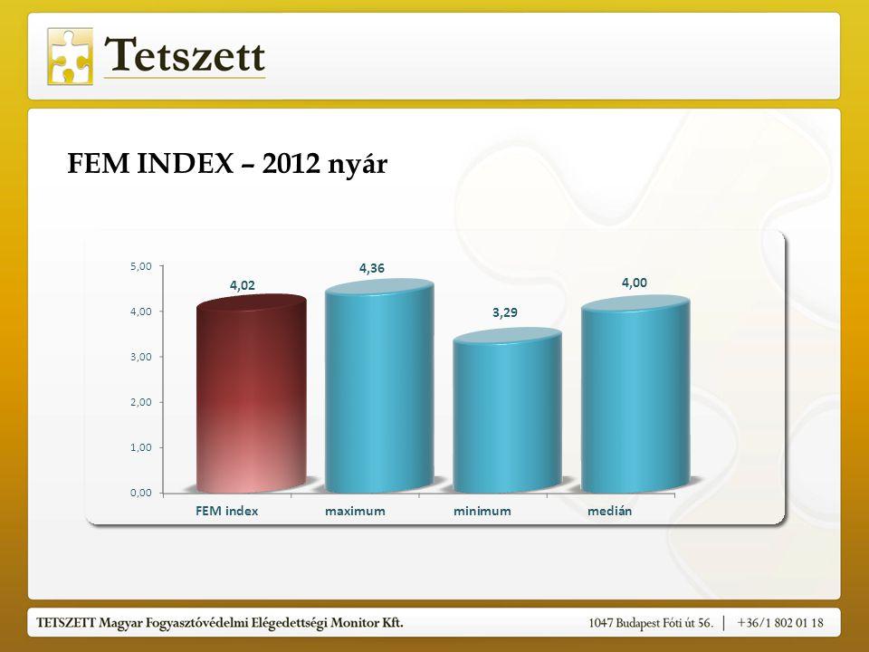 FEM INDEX – 2012. nyár