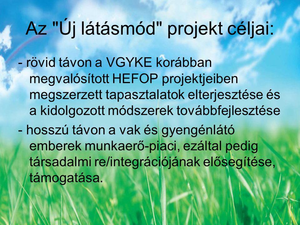 Az Új látásmód projekt céljai: - rövid távon a VGYKE korábban megvalósított HEFOP projektjeiben megszerzett tapasztalatok elterjesztése és a kidolgozott módszerek továbbfejlesztése - hosszú távon a vak és gyengénlátó emberek munkaerő-piaci, ezáltal pedig társadalmi re/integrációjának elősegítése, támogatása.