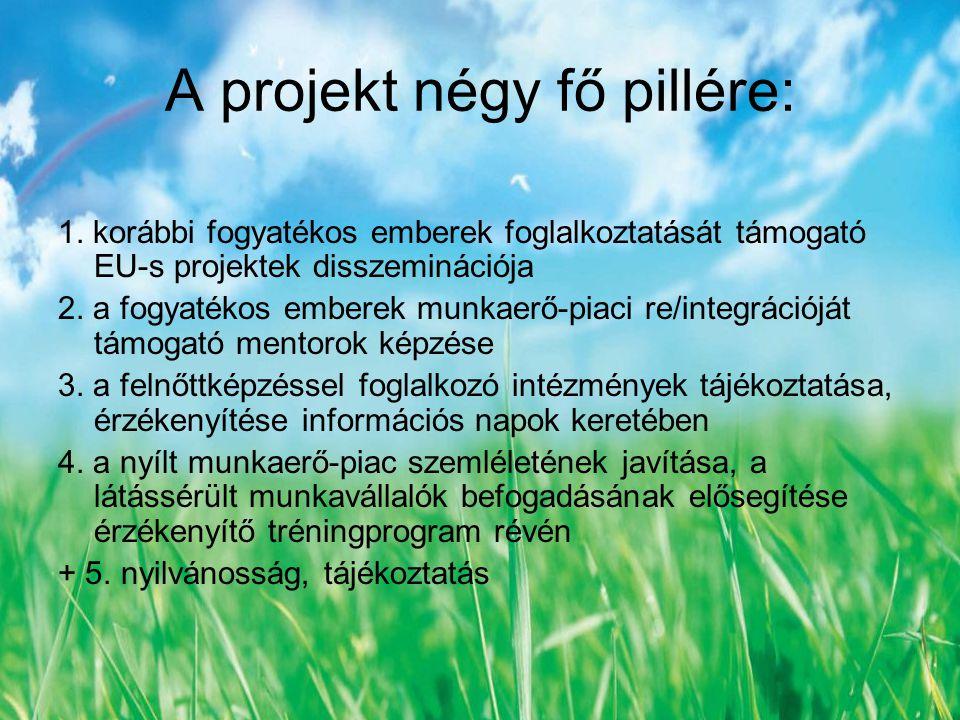 Az Új látásmód projekt eredményei: - 3 felnőttképzési szakmai műhely konferencia (Debrecen, Szeged, Győr) - egy tanulmánykötet nyomtatásban és elektronikusan - egy disszeminációs konferencia (Budapest) - 180 órás Látássérültek rehabilitációs mentora című képzés kidolgozása - 19 rehabilitációs mentor sikeres képzése - a Túloldalról érzékenyítő tréning trénereinek kidolgozott képzése - 10 régi és 9 új tréner kiképzése - 2 Túloldalról érzékenyítő tréning és 9 tréningdemonstráció megszervezése és lebonyolítása
