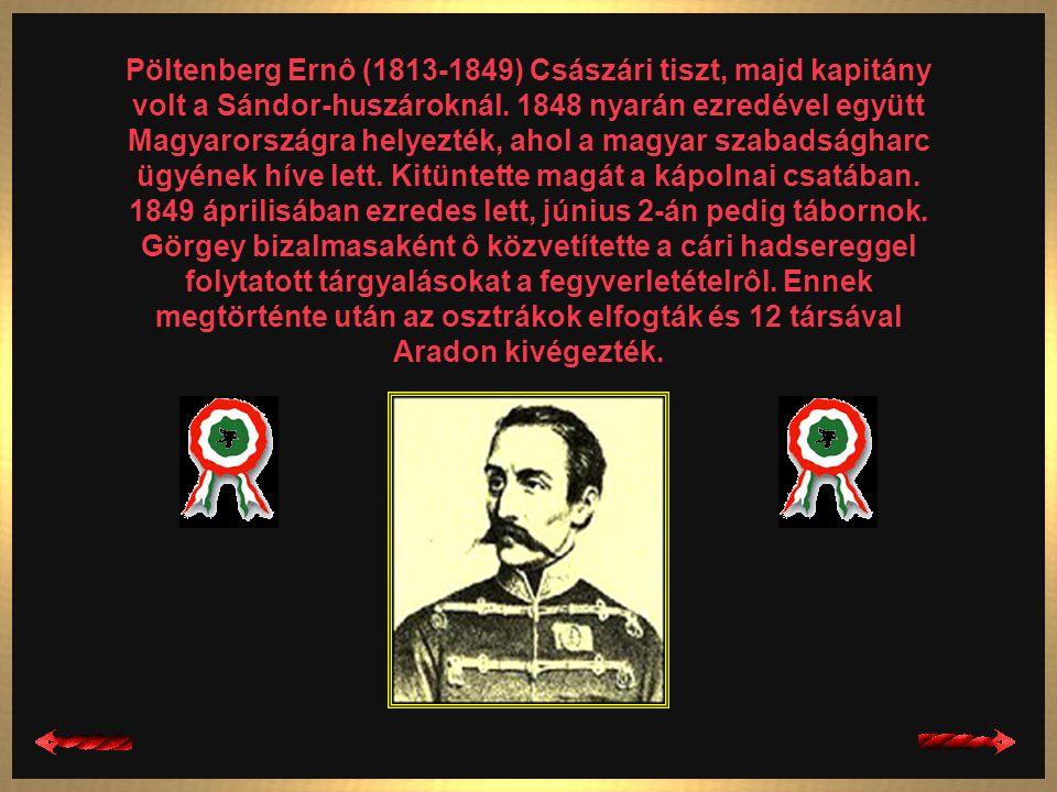 Nagysándor József (1804-1849) 1823-tól a császári hadseregben szolgált, 1844-ben huszárkapitányként vonult nyugalomba. 1848-ban a magyar kormány szolg