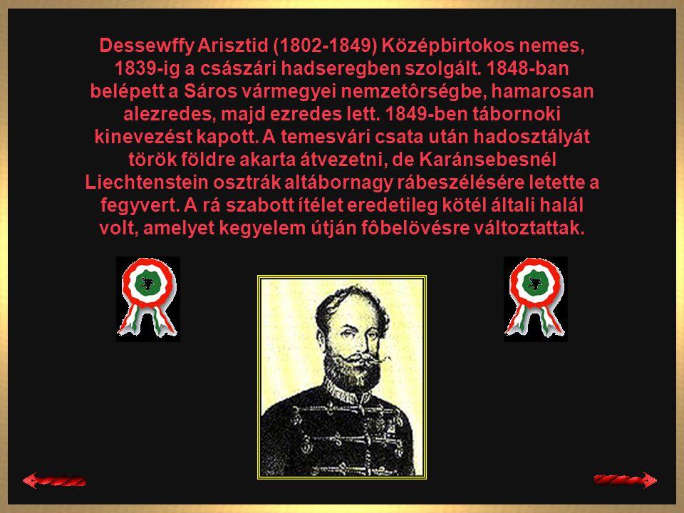Damjanich János (1804-1849) Szerb határôrcsaládból származott, a magyar nemzeti törekvések és a radikális polgári reformok híve volt. 1848 nyarán csat