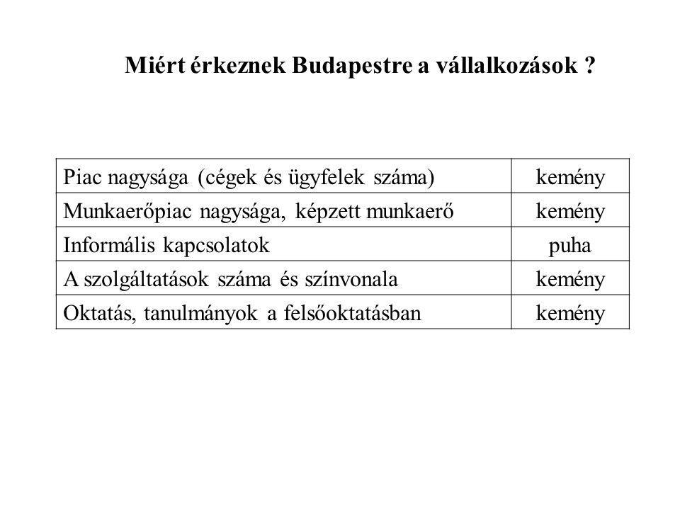 Piac nagysága (cégek és ügyfelek száma)kemény Munkaerőpiac nagysága, képzett munkaerőkemény Informális kapcsolatokpuha A szolgáltatások száma és színvonalakemény Oktatás, tanulmányok a felsőoktatásbankemény Miért érkeznek Budapestre a vállalkozások
