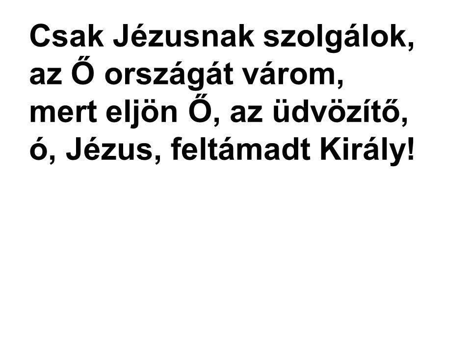 Csak Jézusnak szolgálok, az Ő országát várom, mert eljön Ő, az üdvözítő, ó, Jézus, feltámadt Király!