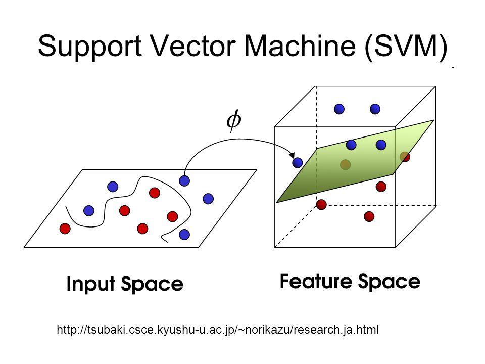 Support Vector Machine (SVM) http://tsubaki.csce.kyushu-u.ac.jp/~norikazu/research.ja.html