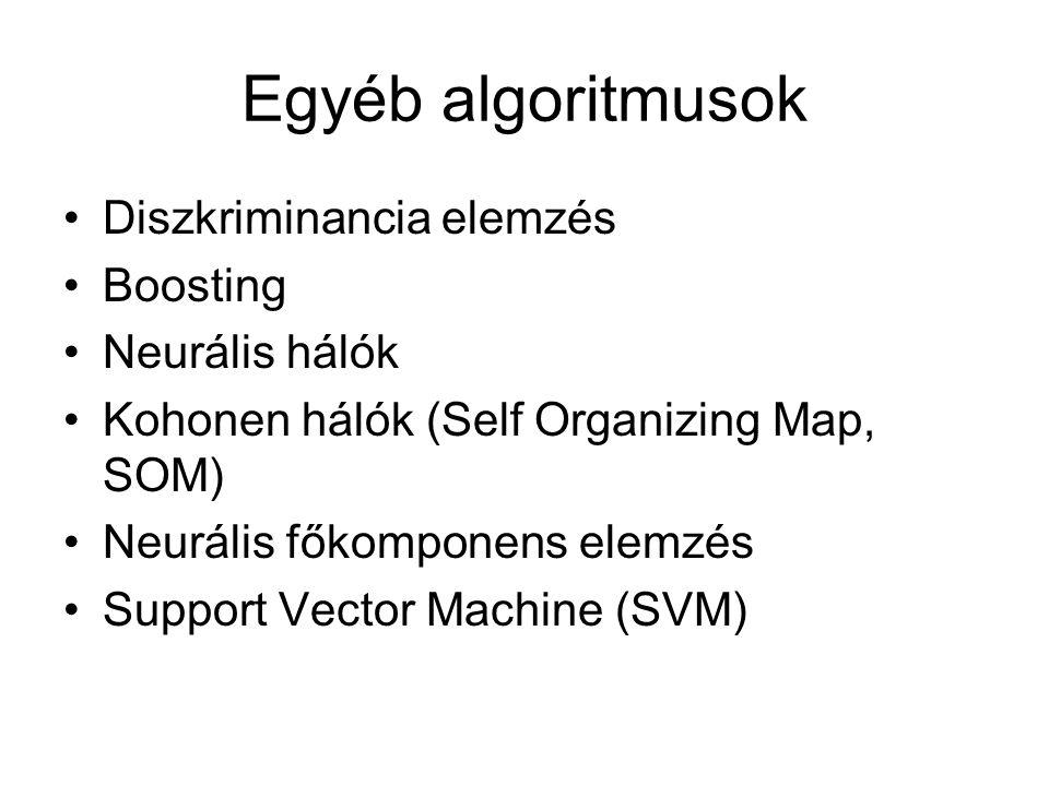 Egyéb algoritmusok Diszkriminancia elemzés Boosting Neurális hálók Kohonen hálók (Self Organizing Map, SOM) Neurális főkomponens elemzés Support Vecto