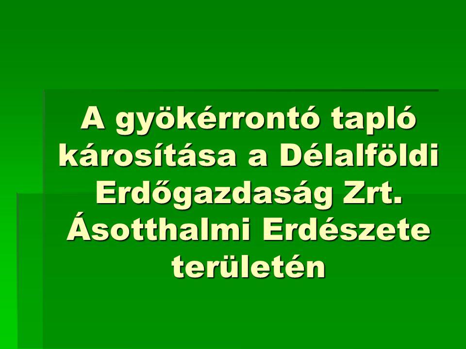 Az Ásotthalmi Erdészet  Erdőtervezett terület: 12.434,86 ha