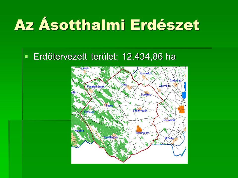 Termőhelyi adottságok  Erdőssztyepp klíma  Többletvízhatástól független a terület 96%-a  Karbonátos humuszos homok talaj  Középmély termőréteg  Homok fizikai talajféleség