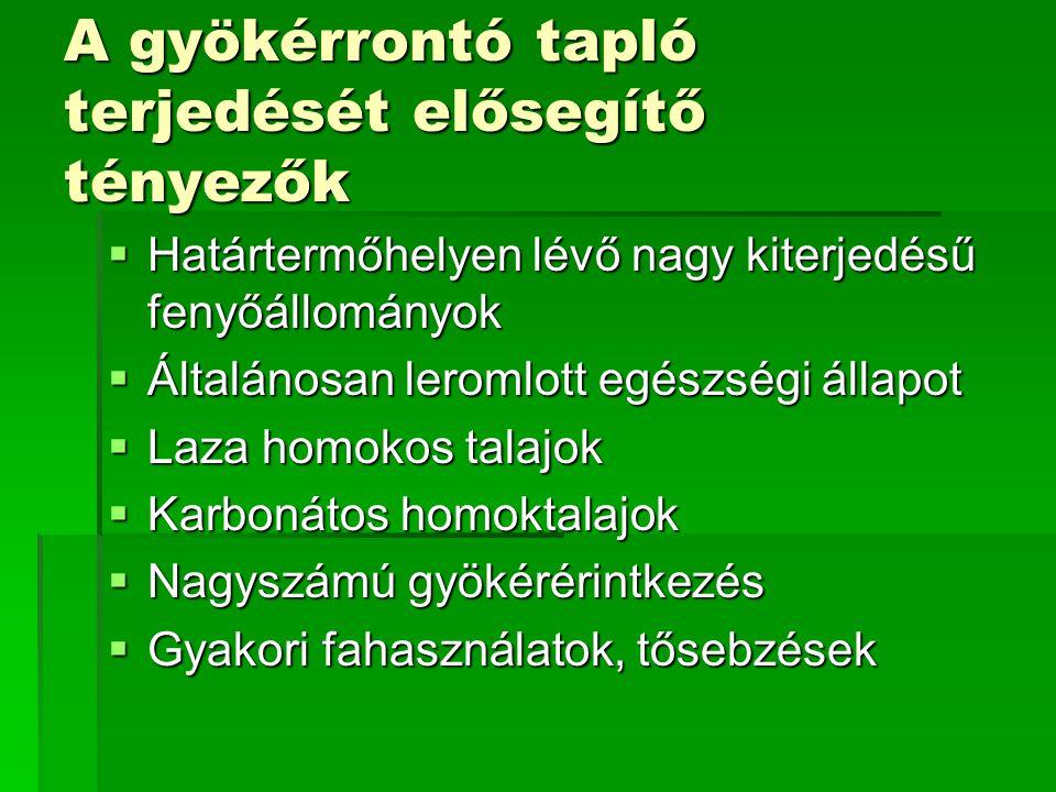 ErdőrészletTerület Károsítás mértéke Pusztuló faegyedek Ásotthalom302/A 13,7 ha 6,42% 23 db Ásotthalom308/B 8,27 ha 6,17% 16 db Ásotthalom310/H 3,83 ha 7,05% 12 db A károsított állományok felvételezése