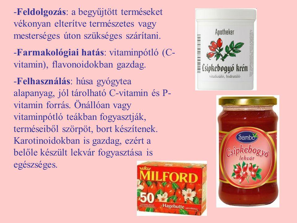 -Feldolgozás: a begyűjtött terméseket vékonyan elterítve természetes vagy mesterséges úton szükséges szárítani. -Farmakológiai hatás: vitaminpótló (C-