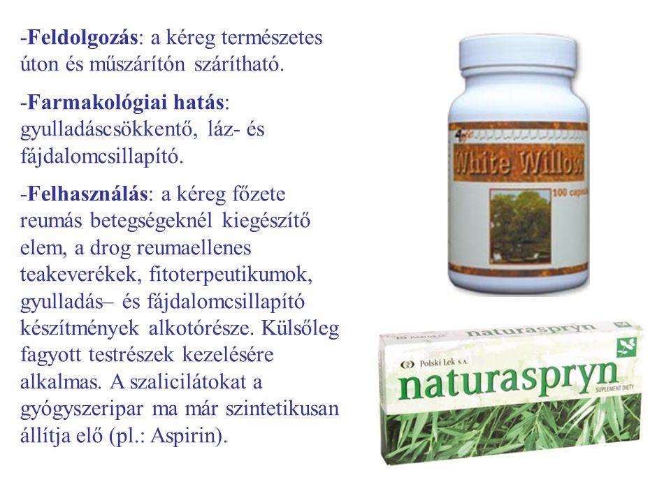 -Feldolgozás: a kéreg természetes úton és műszárítón szárítható. -Farmakológiai hatás: gyulladáscsökkentő, láz- és fájdalomcsillapító. -Felhasználás: