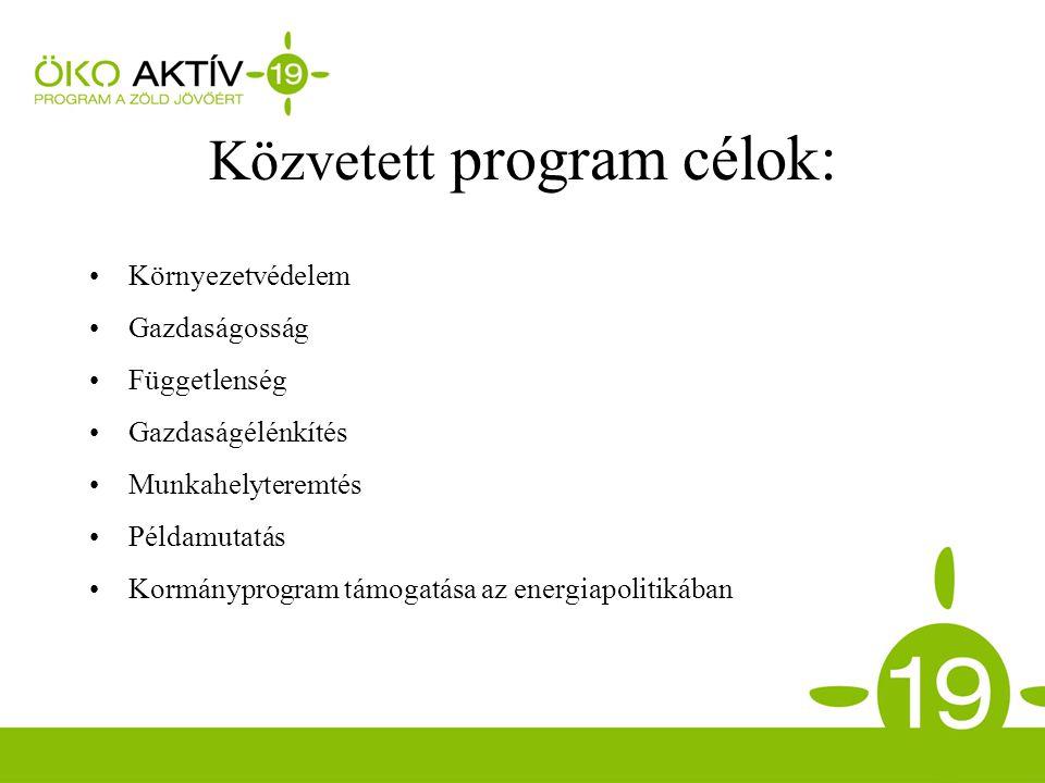 Közvetett program célok: Környezetvédelem Gazdaságosság Függetlenség Gazdaságélénkítés Munkahelyteremtés Példamutatás Kormányprogram támogatása az energiapolitikában