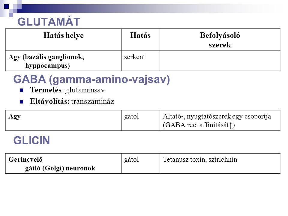 GLUTAMÁT AgygátolAltató-, nyugtatószerek egy csoportja (GABA rec. affinitását↑) Hatás helyeHatásBefolyásoló szerek Agy (bazális ganglionok, hyppocampu